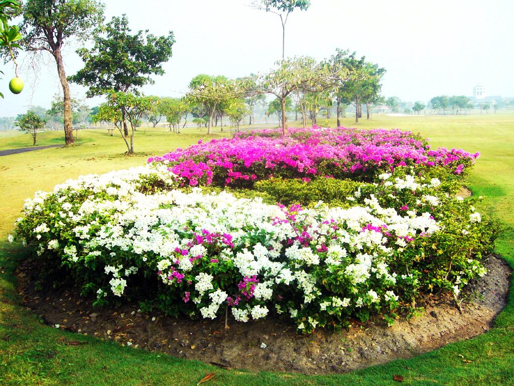 Bangpoo Golf & Sport Club