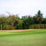 Thumbnail of http://The%20Royal%20Golf%20&%20Country%20Club